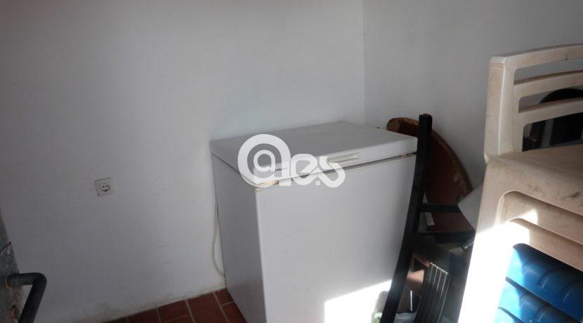 P1190457 (Large)